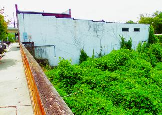 This building in downtown Robbinsville has a massive field of kudzu growing adjacent to the structure. Photos by John Colwell/Contributing Photographer